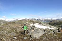 Utsikt nordover mot Breheimens sørøstlige deler. - Foto: Ukjent