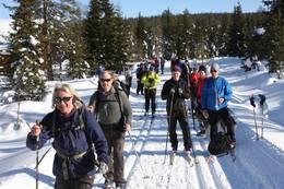 Langtur på ski - Foto: Ivar Helleberg