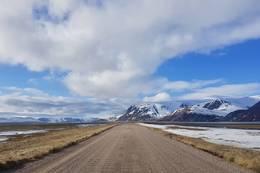 Veien ut til Høyholmen -  Foto: Øystein Ruud