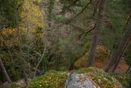 Bratt terreng ved Rudskulen - Foto: Øystein Berntsen