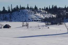 Myklesjøen Bårnaustet og Fiskebua på øya som Nansen benyttet -  Foto: Guttorm Spillum