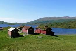Selet på Gjøsetstølen -  Foto: Jan Roar Sekkelsten
