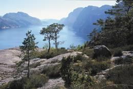 Utsikt over Lysefjorden fra Bakken gard - Foto: ukjent