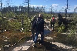 Gjennom Jerndalen naturreservat - Foto: Evy K. S. Eliassen