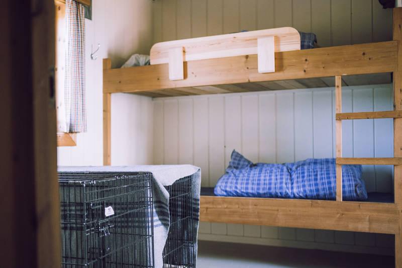 Storerikvollen har egne rom for hund og eier.