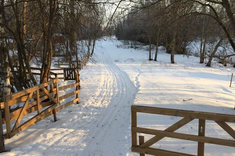 Om vinteren kan man gå på ski