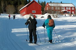 På ski i Trondheimsmarka - Foto: Den Norske Turistforening