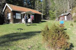 Ryghstua er en av flere gamle boplasser langs stien. -  Foto: Anne Gallefos Wollertsen
