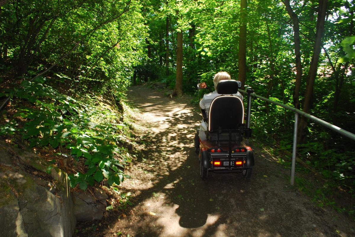 Fra Henie Onstad går turveien gjennom skogen et lite stykke. En bred sti/turvei med svak helling nedover i starten.