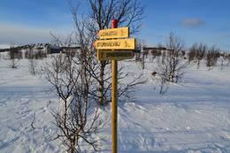 Ny skiløype fra Vestfjellhytta retning Liomseter - Foto: