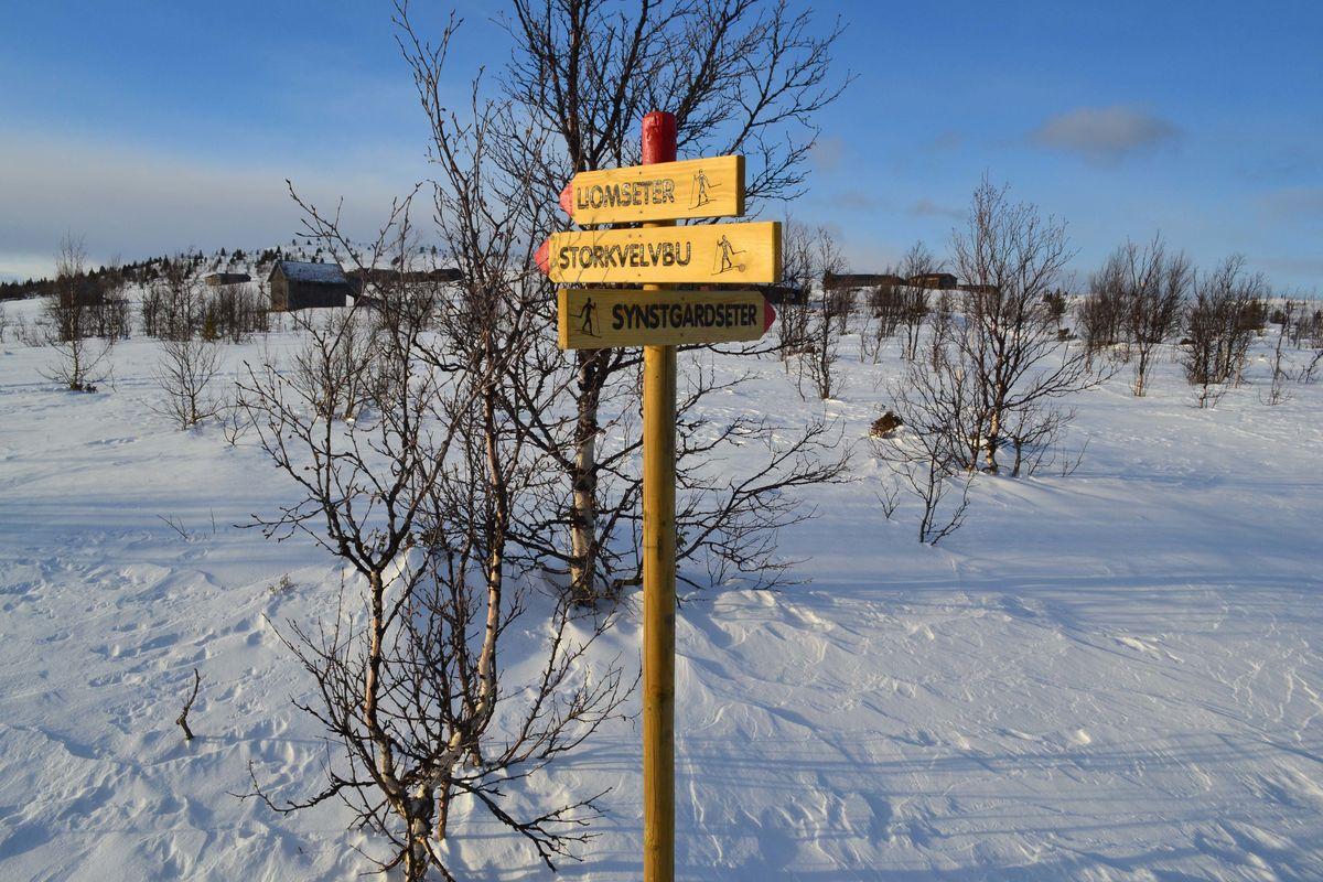 Skiløype (Grytliløypa)  fra Vestfjellhytta retning Liomseter