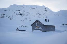 Vending, tidlig vinter - Foto: