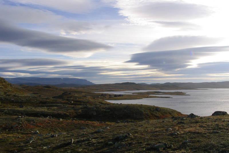 Krækkja på Hardangervidda i September Bildet er tatt fra løypa mot Halne en tidlig morgen.