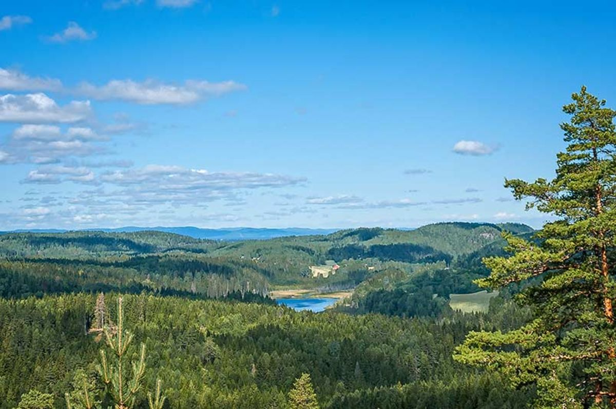 Fantastisk utsikt fra Veståsen