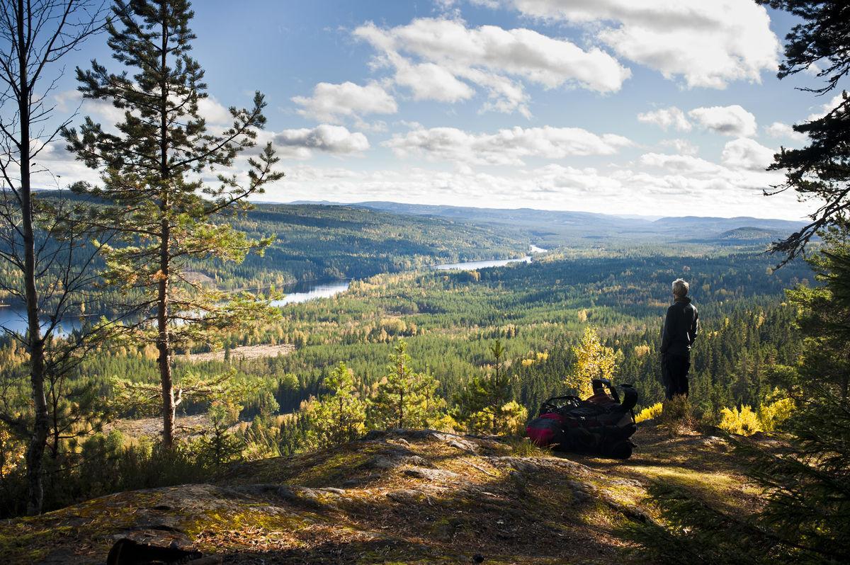 Spektakulær utsikt sørover fra Maliskjæret.
