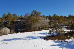 Her kan vi ane klippetanga oppe på bergknatten - Foto: Kjell Fredriksen