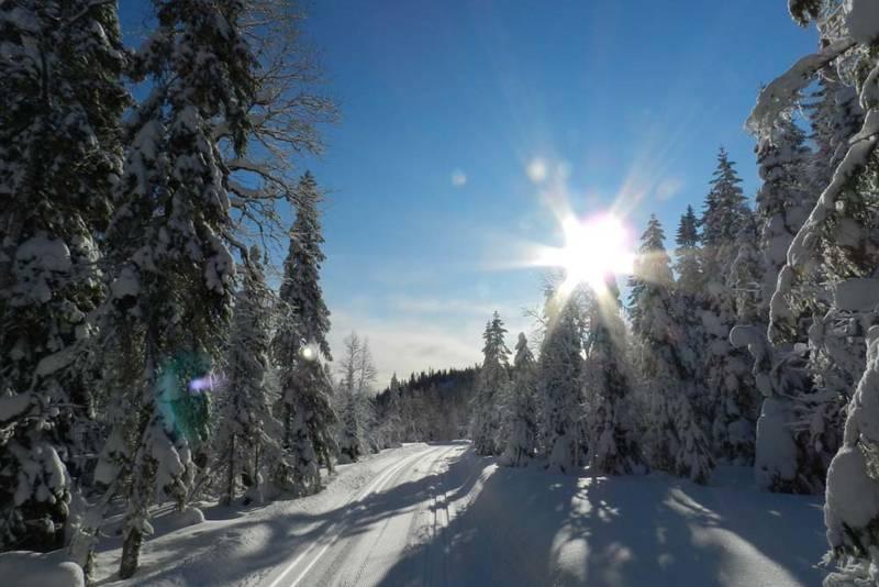 Herlig vintertur i Romedal almenning.
