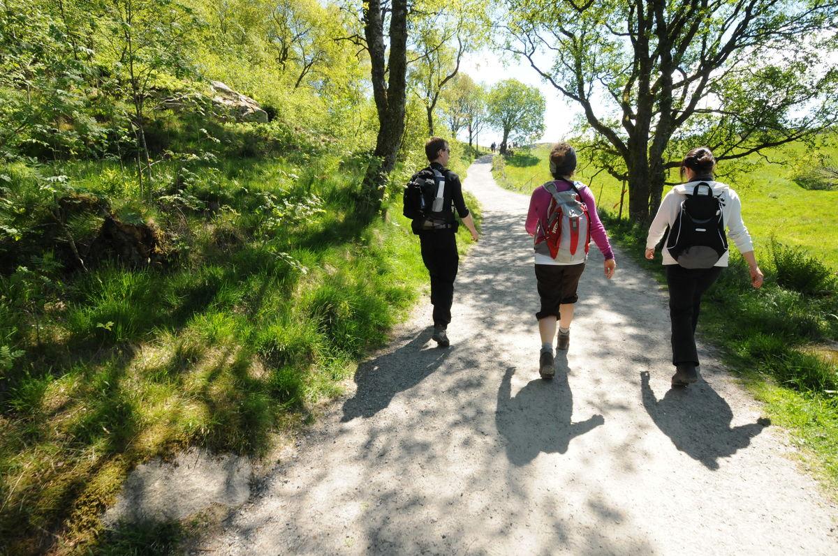 Langs turveien på Gramstad