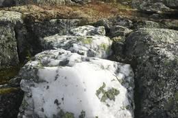 Nydelege steinar rett før toppen av Høgenipa - Foto: Anne Cecilie Kapstad