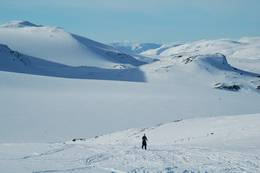 Opp mot Hardangerjøkulen - Foto: Anne Jørgensen