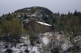 Granbustøyl - Foto: Per Roger Lauritzen