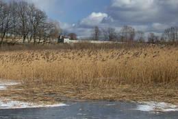 Sydenden av Borrevannet, ved Vassbotn. Fugletittertårnet er midt i blidet. - Foto: Ukjent