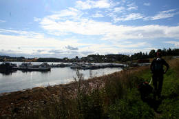 Ta en pause og se på båtene - rasteplass på brygga! - Foto: Kathrine Kragøe Skjelvan