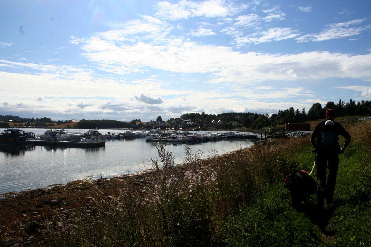 Ta en pause og se på båtene - rasteplass på brygga!
