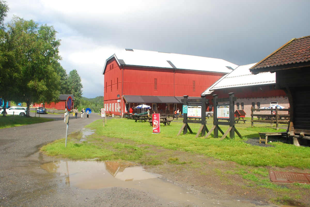På Losby besøksgård er det kafè som drives av Nitor.
