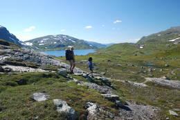 Ned mot Lonavatnet. - Foto: Torill Refsdal Aase