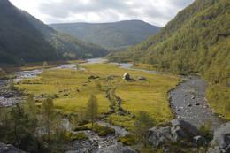 Kvitlen hvor den gamle fjellgarden lå. - Foto: Odd Inge Worsøe