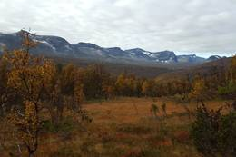 Høstens farger og Storsalmassivet er et vakkert skue. -  Foto: Oddveig Torve