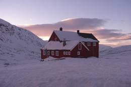 Stavali - Foto: Torill O. Hauge