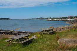 Benkene ved sjøen er fine rasteplasser.  - Foto: John Petter Nordbø