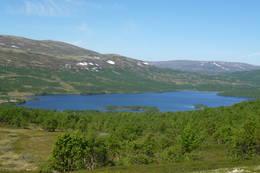 Hessjøen med Morkavollhøgda og Raudhovde i bakgrunnen. -  Foto: Liv Hegseth