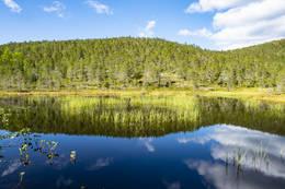 Små fine dammer passeres i nedre enda av Svaetvatnet - Foto: Kjell Fredriksen