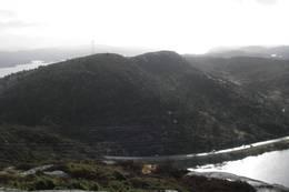 Utsikt mot Dyrafjellet
