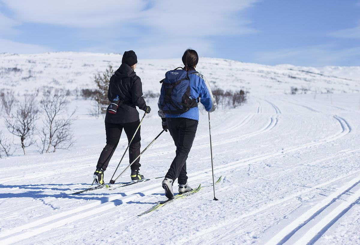 Hovden Fjellstoge ligger i umiddelbar nærhet til storslått natur og flotte turløyper