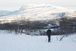 Flott skiterreng rett fra hytta. Garantert ikke oppkjørt med maskin! - Foto: Tor Magne Andreassen