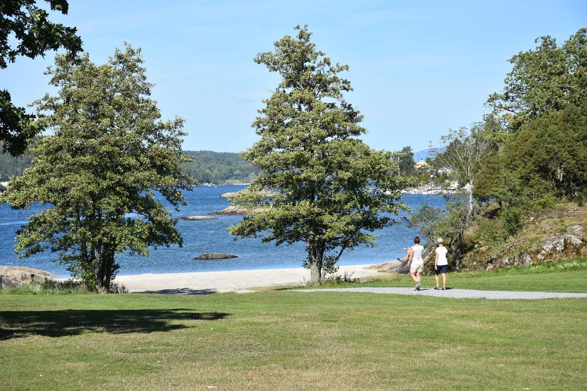Idylliske friområder rundt Beivoll Gård
