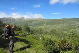 Etter en lengre stigning mellom gårder og i fjellskog er det innover Rysndalen langs grusvei. -  Foto: Fredrik Bru