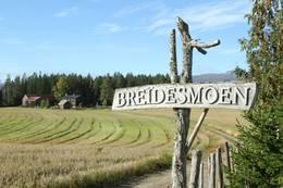 Breidesmoen -  Foto: Visit Innherred