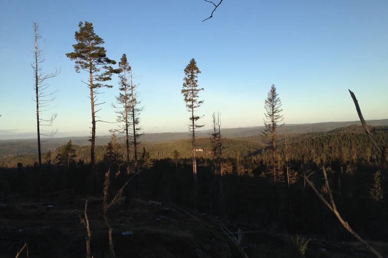 Utsikt nordover fra Eikelandsvarden