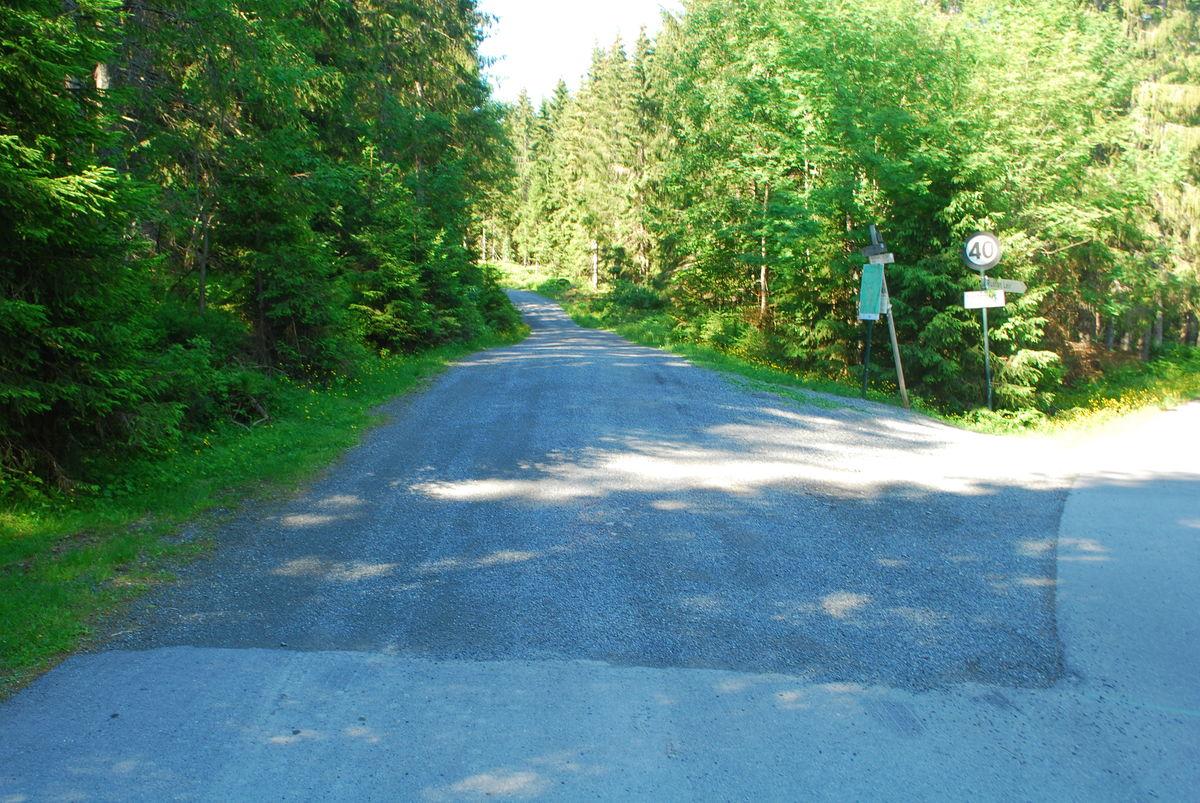 Veikryss der turen til Nedre Gupu går på grusvei rett frem. Det er også mulig med rullestol et stykke rett nordover (til høyre i bildet), til litt forbi Svartebekken.