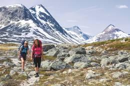 Kontraster: I Narvikfjellan møter du storslagne fjellformasjoner i slående kontrast til frodige daler. -  Foto: Hallgrim Rogn
