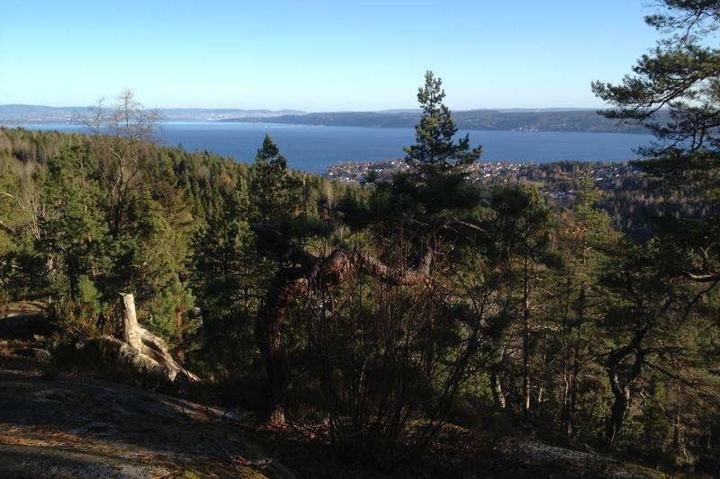 Utsikt fra Varden over Oslofjorden