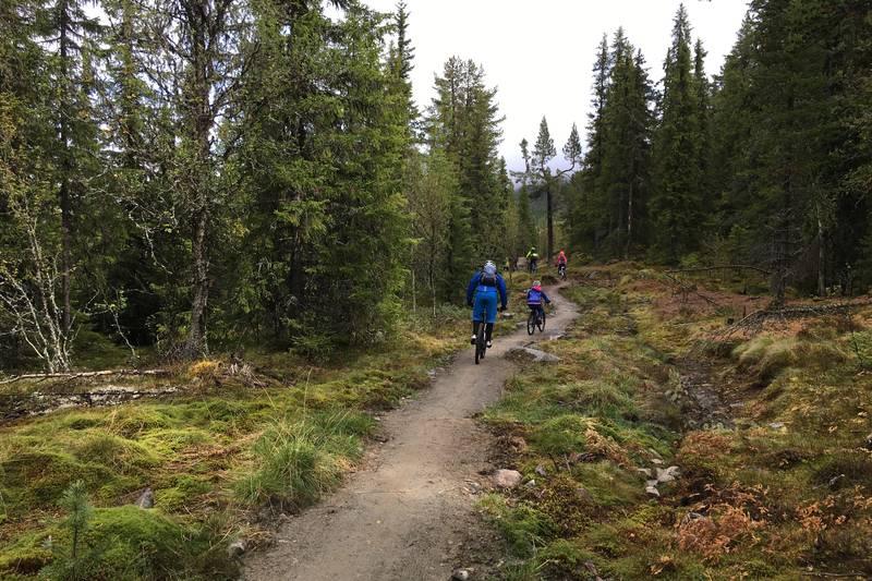 Store deler av stien er bygget spesielt for syklister