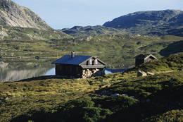 Hytta ligger i et grønt og frodig område like ved Kringlevatnet -  Foto: Stavanger Turistforening