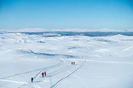 Skiløpere på vei gjennom Nesfjella. I bakgrunnen skimter vi både Hallingskarvet og Hemsedalsfjella. - Foto: Lars Storheim