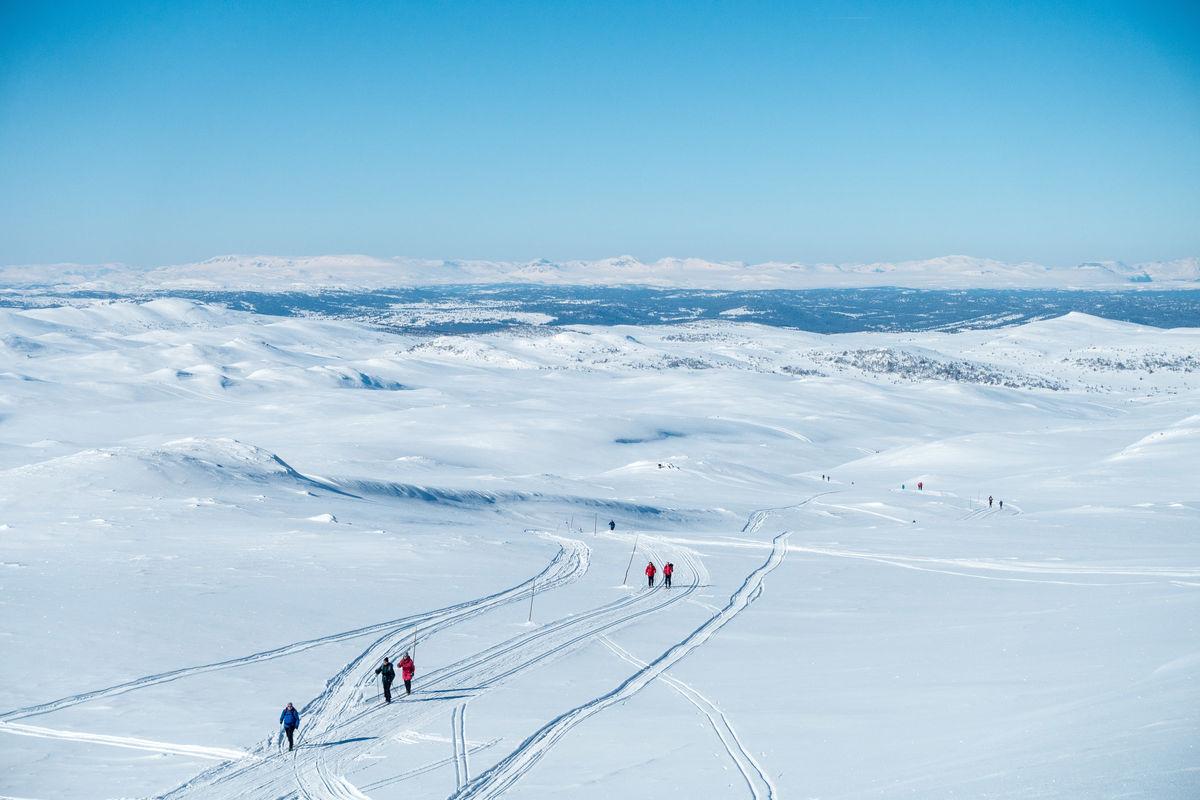 Skiløpere på vei gjennom Nesfjella. I bakgrunnen skimter vi både Hallingskarvet og Hemsedalsfjella.